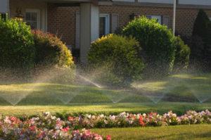 системы автоматического полива газона